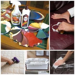 Правила ухода за мебелью из кожи