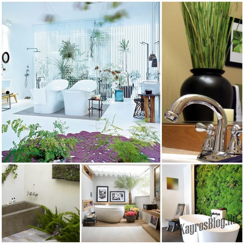 Как правильно украшать ванную комнату живыми растениями?