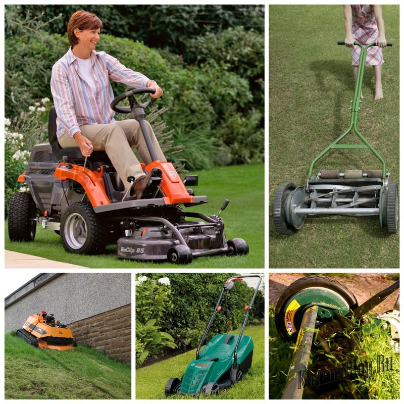 Как выбрать газонокосилку – виды и особенности