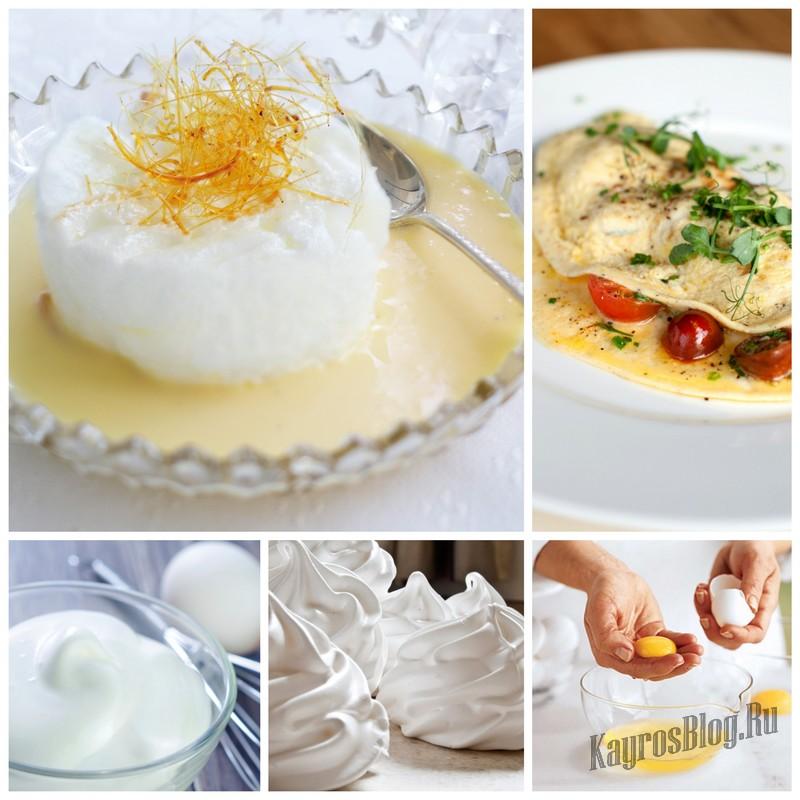 Варианты использования яичных белков