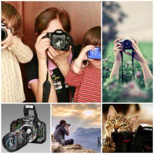 Как научиться фотографировать - советы новичкам