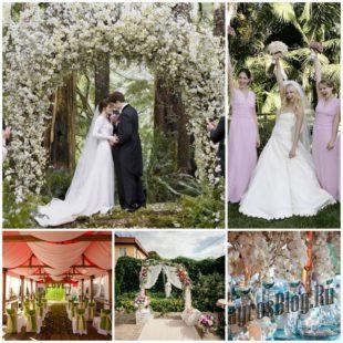 Свадьба в европейском стиле - модный тренд