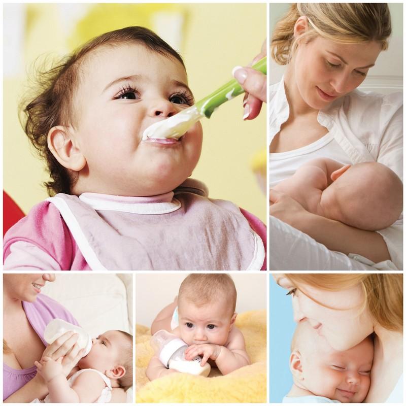 Как нужно кормить новорожденного: что и когда вводить?