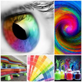Предпочтение цветов и психологическая сила цвета