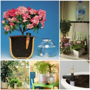 Как сделать устройство для полива комнатных растений