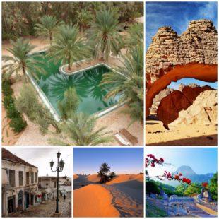Пешеходные маршруты Туниса какое направление стоит выбрать туристу