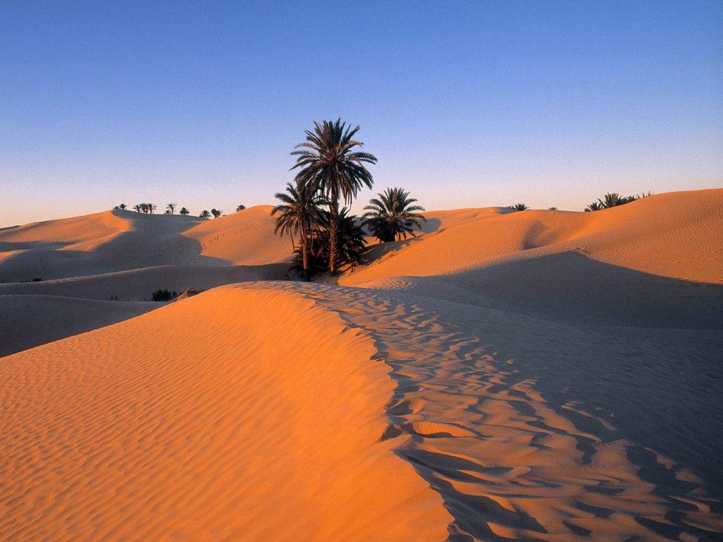 Сахара Тунис