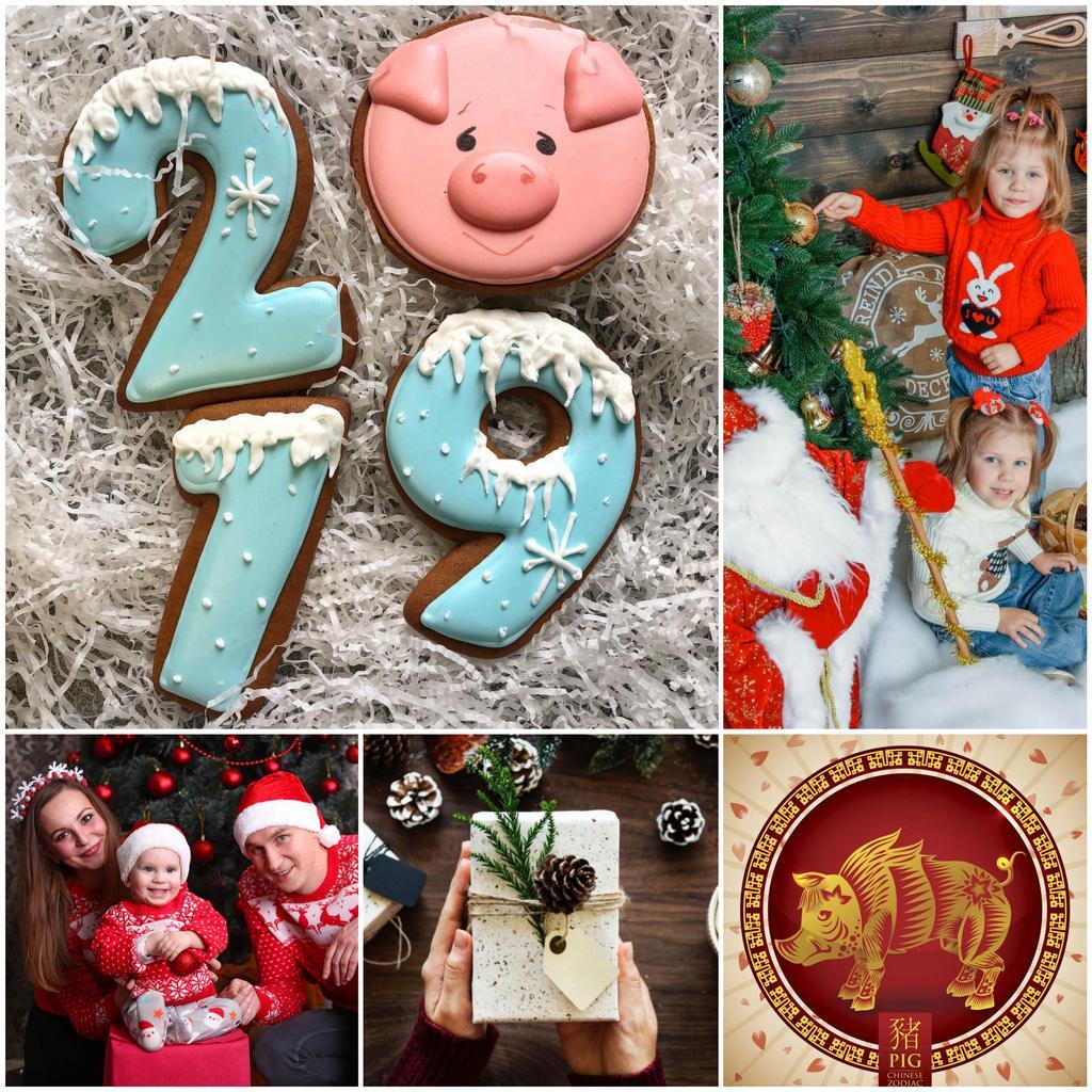 Встреча нового года 2019 - желтой земляной свиньи