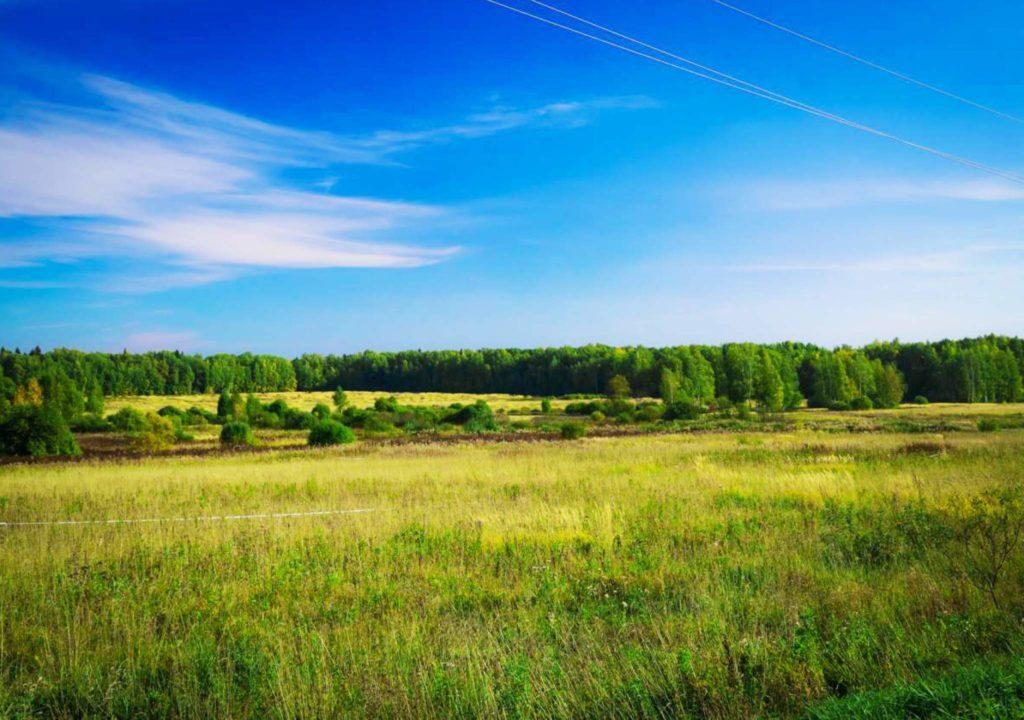 Где можно купить земельный участок