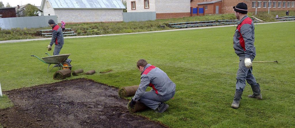Как уравновесить кислотность и щелочность почвы для газона