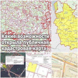 Какие возможности открыла публичная кадастровая карта