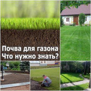Почва для газона Что нужно знать