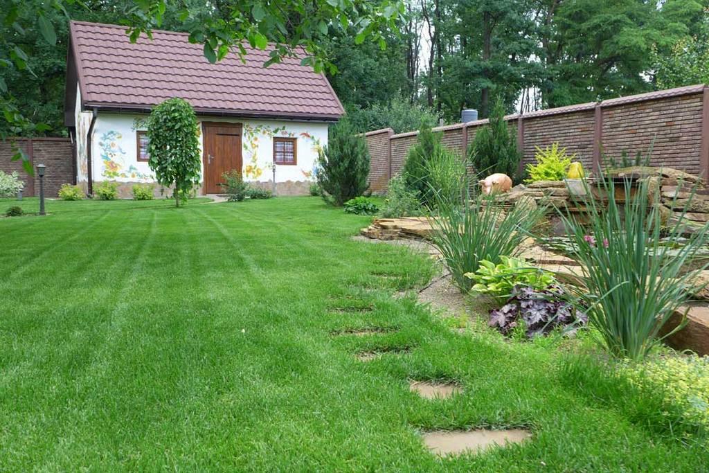 Рулонная газонная трава
