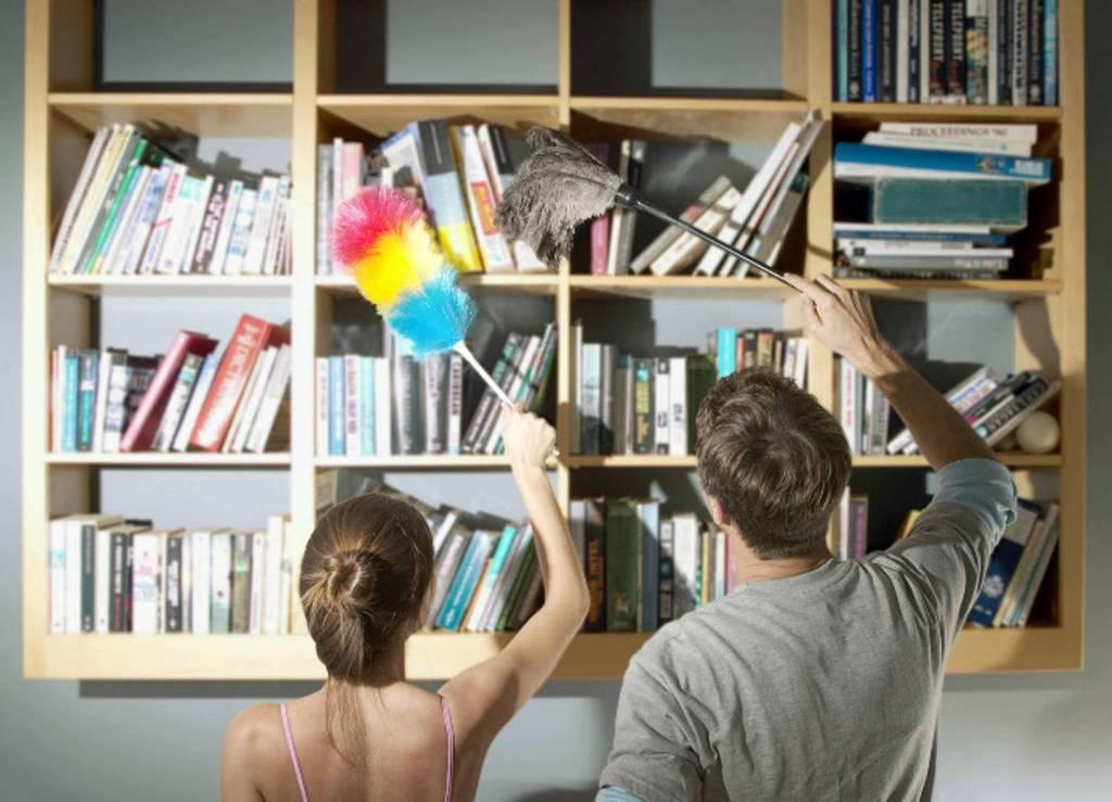 Возможна ли идеальная чистота в доме