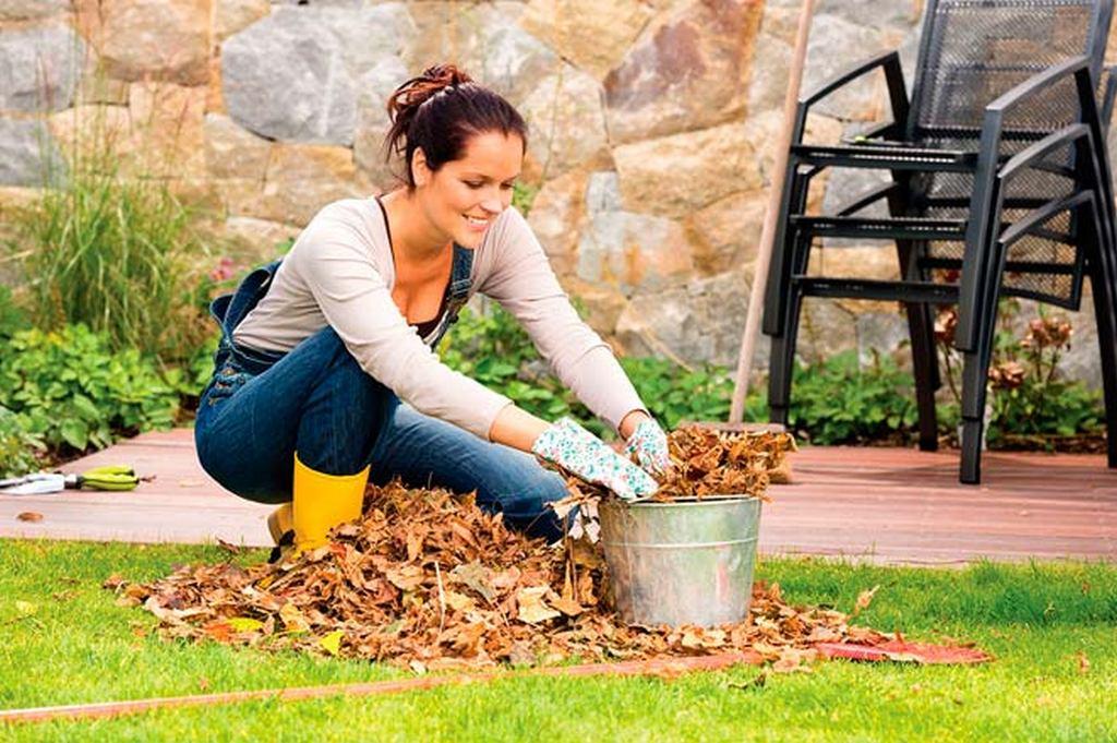 Что нужно сделать в саду в октябре