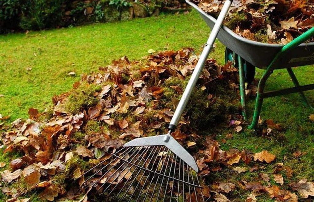 Ноябрьские садововые мероприятия