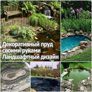 Декоративный пруд своими руками. Ландшафтный дизайн