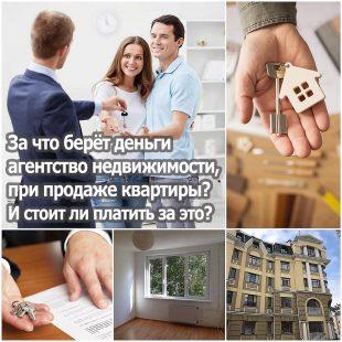 За что берёт агентство недвижимости деньги, при продаже квартиры? И стоит ли платить за это?