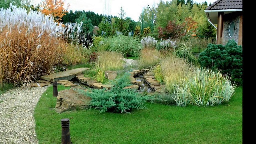 Основной уход за садом трав