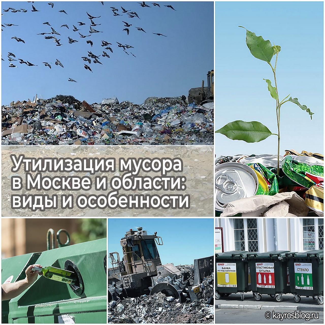 Утилизация мусора в Москве и области виды и особенности