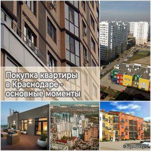 Покупка квартиры в Краснодаре - основные моменты