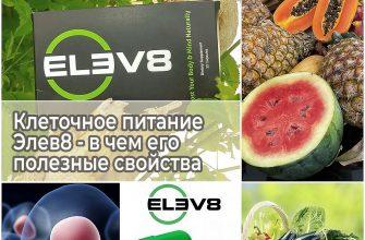 Клеточное питание Элев8 - в чем его полезные свойства