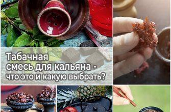 Табачная смесь для кальяна - что это и какую выбрать
