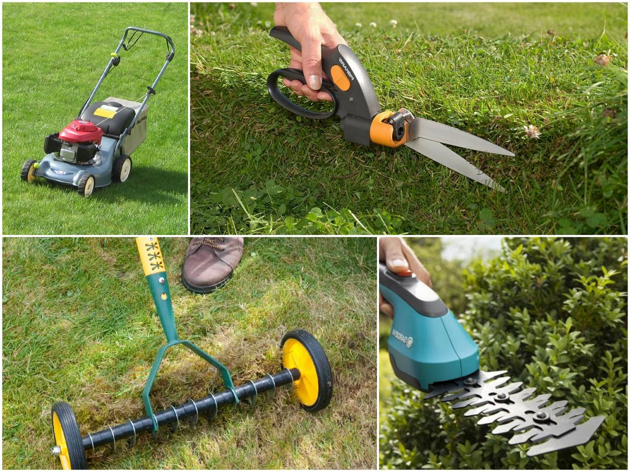 Какой именно инструмент для стрижки газона стоит выбрать