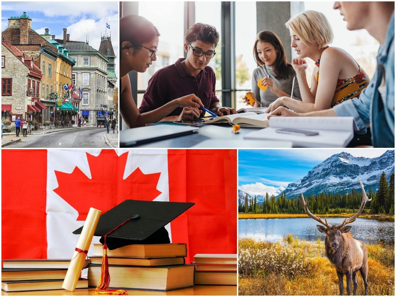 Образование в Канаде доступно каждому