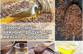 Семена льна – важный продукт для женского здоровья
