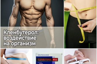 Кленбутерол: воздействие на организм