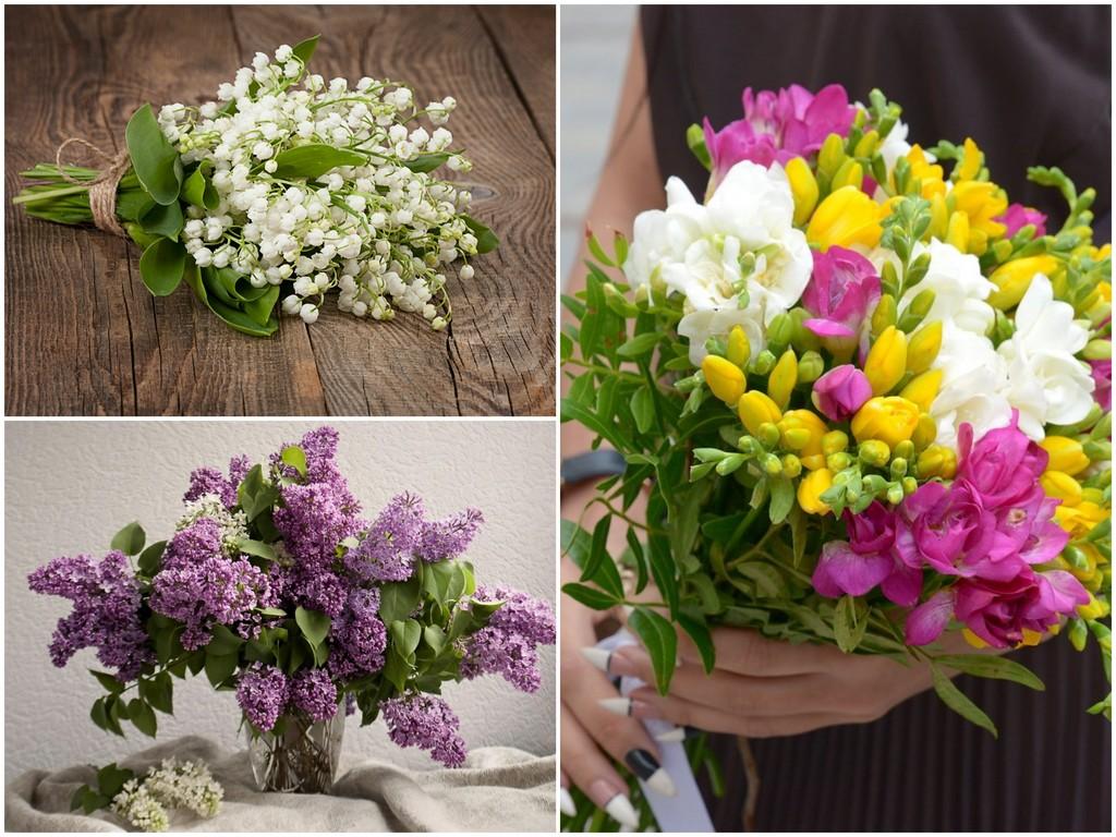Какие цветы подойдут Раку (22.06 - 22.07)