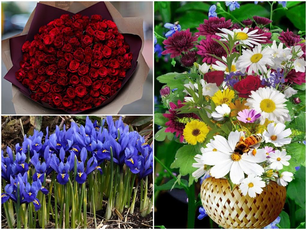 Цветы для Близнецов (22.05 - 21.06)