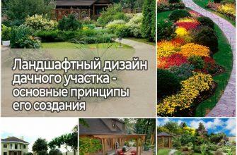 Ландшафтный дизайн дачного участка, основные принципы его создания