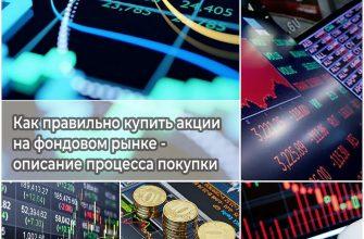 Как правильно купить акции на фондовом рынке - описание процесса покупки
