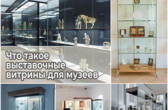 Что такое выставочные витрины для музеев