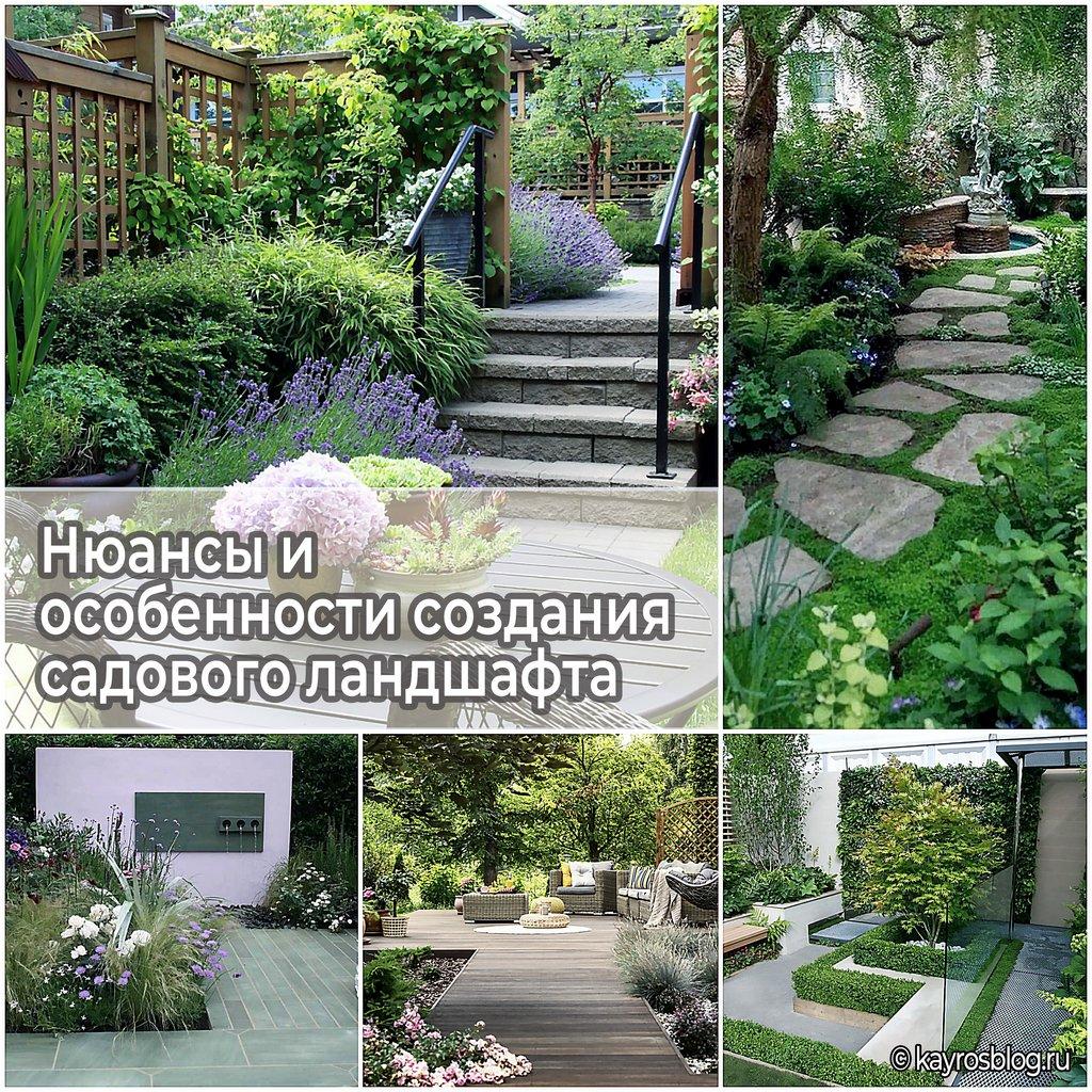 Нюансы и особенности создания садового ландшафта