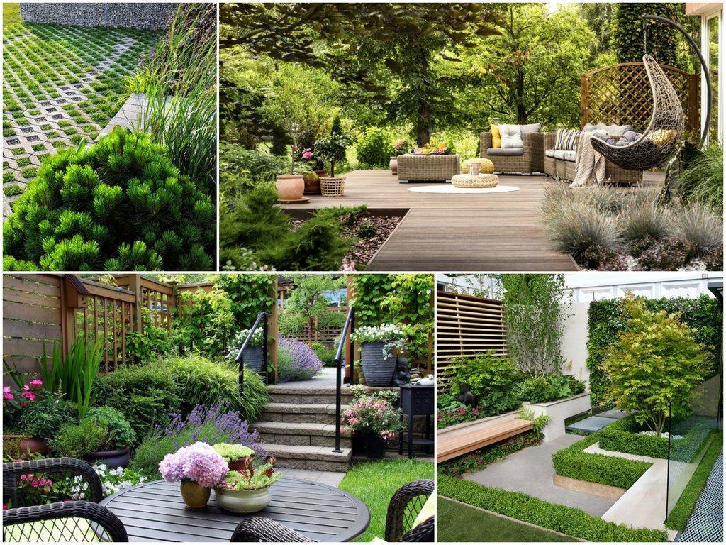 Особенности садового ландшафта